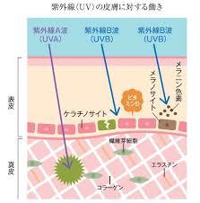 引用http://www.wakahada-sos.com/column/care/care_03.html