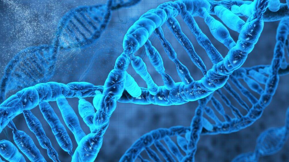 DNA解析用キットってどんなもの?何がわかるの?